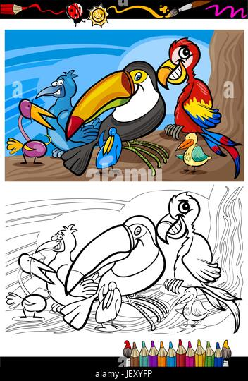 Toucan Picture Stock Photos & Toucan Picture Stock Images ...