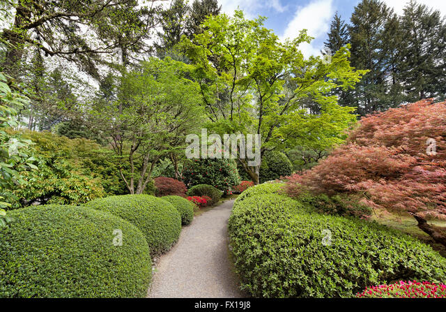 Portland oregon united america spring stock photos for Japanese garden plants and trees