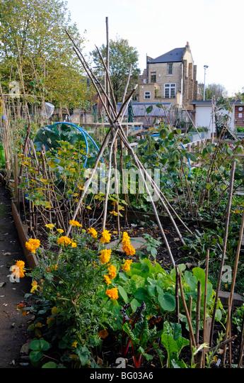 Garden Walk London: Henrys Stock Photos & Henrys Stock Images