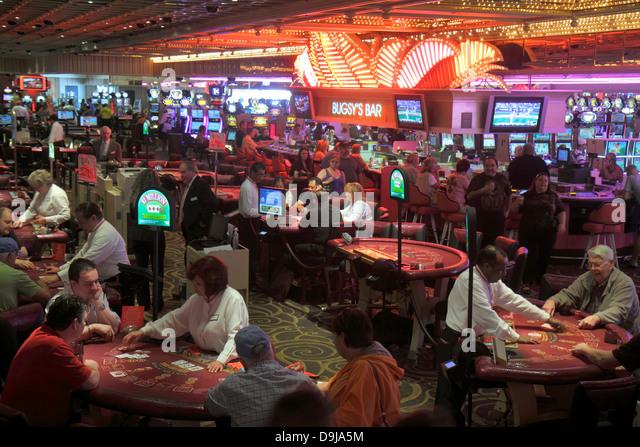 denizen casino