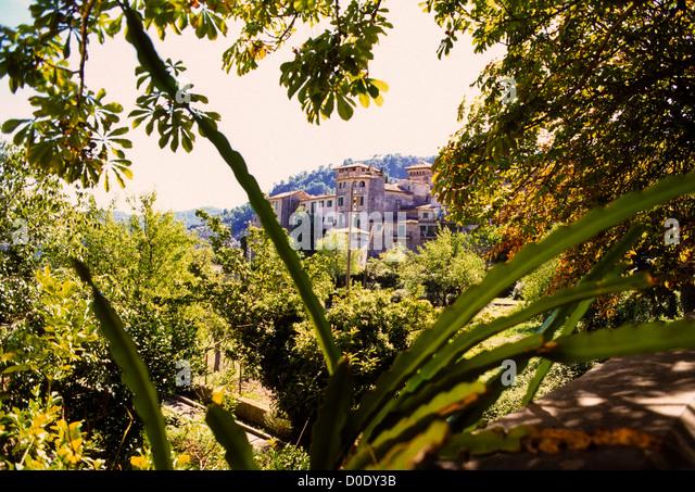 Countryside Gardens Island Majorca Mallorca Olive Villas
