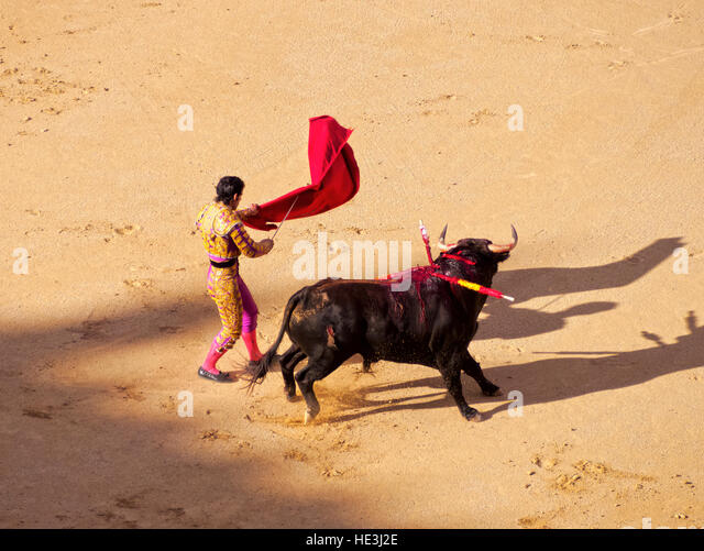 Picador Stock Photos & Picador Stock Images - Alamy