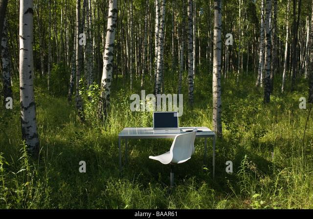 скачать игру на компьютер игру Forest - фото 8