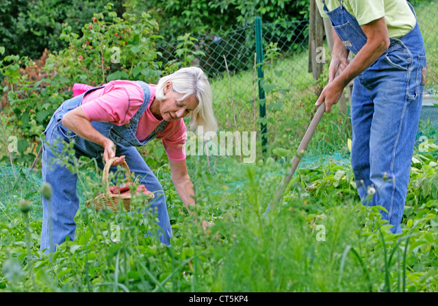 50 year old man gardening stock photos 50 year old man for Gardening tools for 6 year old