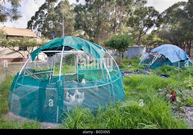 Permaculture stock photos permaculture stock images alamy for Self sustaining pool