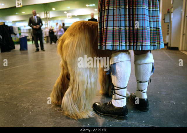 Dog Training Grassington