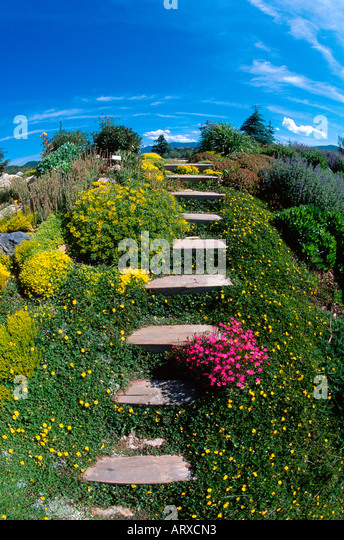 Stairs In Garden Yampa River Stock Photos Stairs In Garden Yampa River Stock Images Alamy