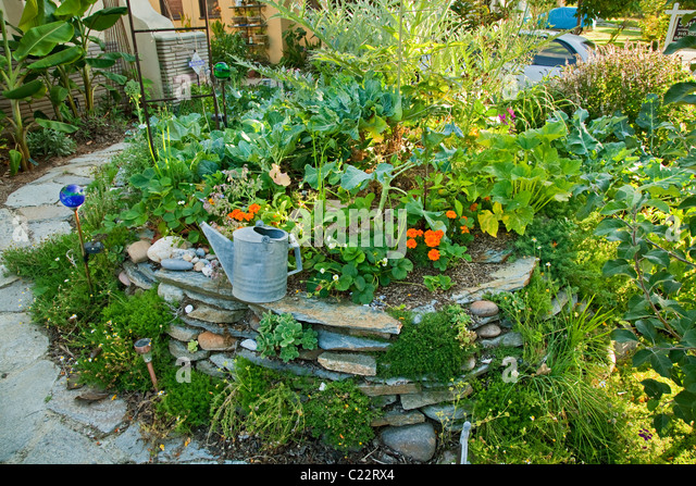 Permaculture Stock Photos Permaculture Stock Images Alamy