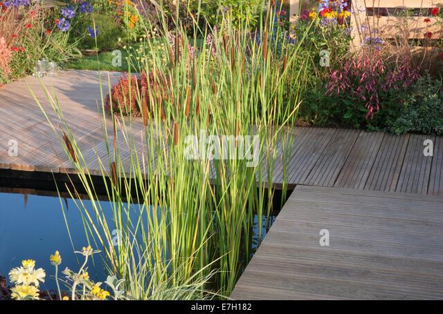 Wooden decking pond stock photos wooden decking pond for Pip probert garden designer