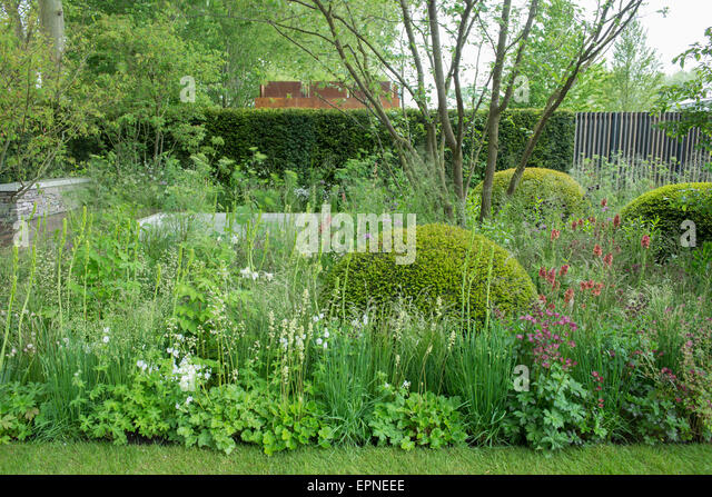 2015 rhs chelsea flower show cloudy bay garden in association with vital earth