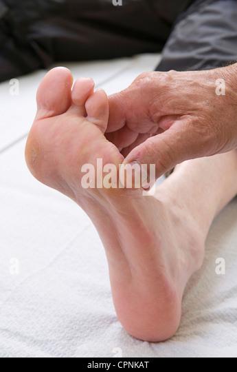Toe Amputation In Old Dog