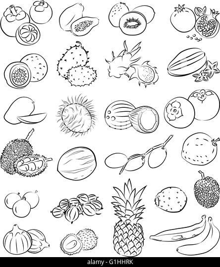 Line Art Fruits : Banana vector sketch stock photos