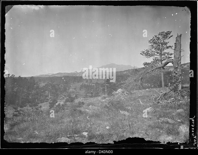 black singles in laramie county Single male household types by county  by place in laramie county  south greeley pine bluffs wyoming cheyenne area laramie mountain west united states cheyenne .