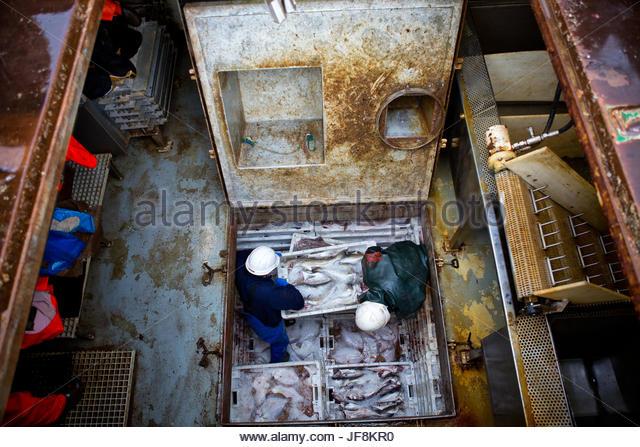 Two men unload a Faroese fishing trawler. - Stock Image