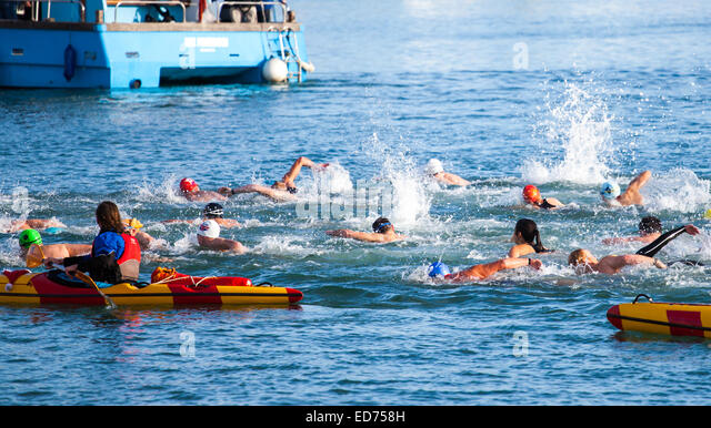 Christmas Swim Stock Photos Christmas Swim Stock Images Alamy