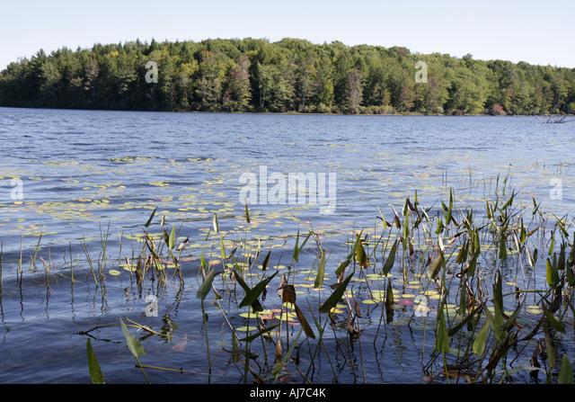 pocono lake preserve black personals Pocono lake preserve personals pocono summit personals beaver lake personals franklin personals pocono pines personals mount pocono personals augusta personals.