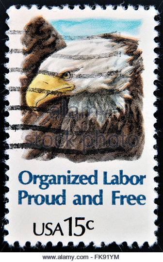an overview of the organized labor in the united states Labor unions have existed in one form or another in the united states since the birth of the country they were created in an effort to protect the working population from abuses such as.