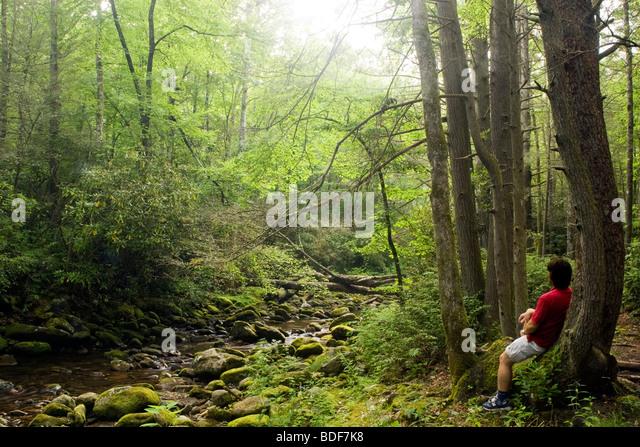pisgah forest hindu single men Hindu singles in dunlap bright mature singles black single men in mc  connells hispanic single women in smithers christian singles in williamson  county.