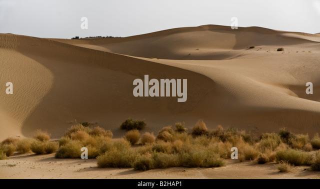 Thar Desert Sand Dunes Stock Photos & Thar Desert Sand Dunes Stock ...