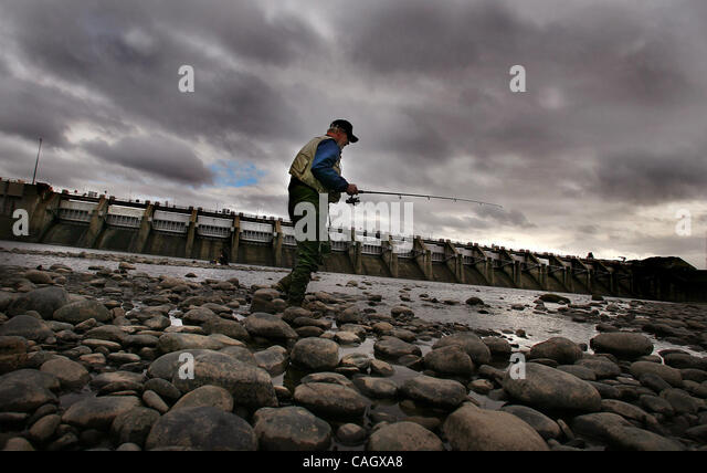 Mickie stock photos mickie stock images alamy for Nimbus dam fishing