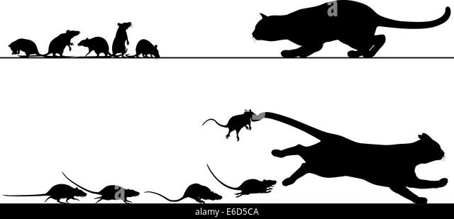 chase stock vector images
