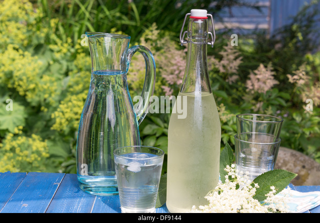 Elderflower Cordial Stock Photos & Elderflower Cordial Stock Images ...