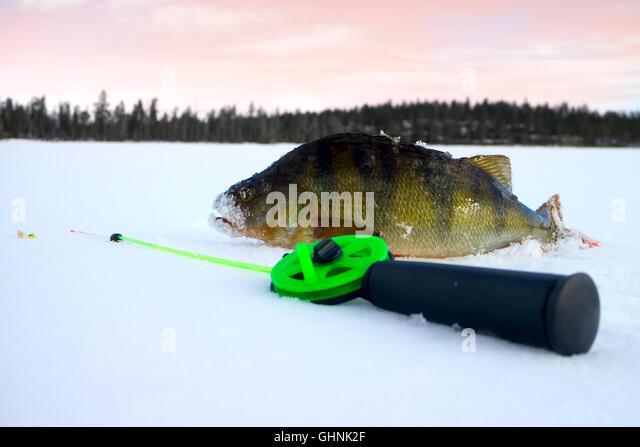 Frozen fish bait stock photos frozen fish bait stock for Frozen fishing pole