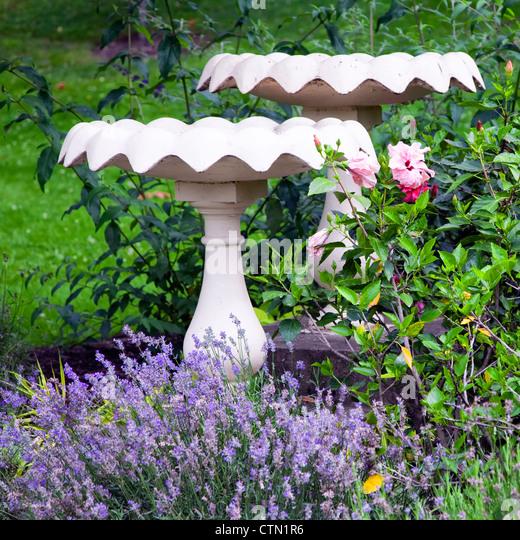Cement Garden Birdbaths In The Summer Garden.   Stock Image