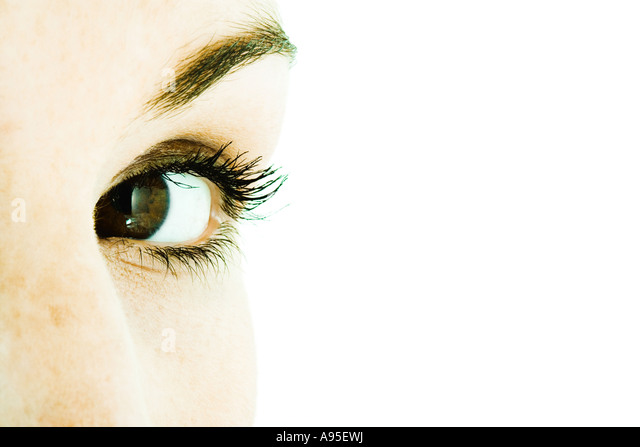 sight vision stock photos  u0026 sight vision stock images