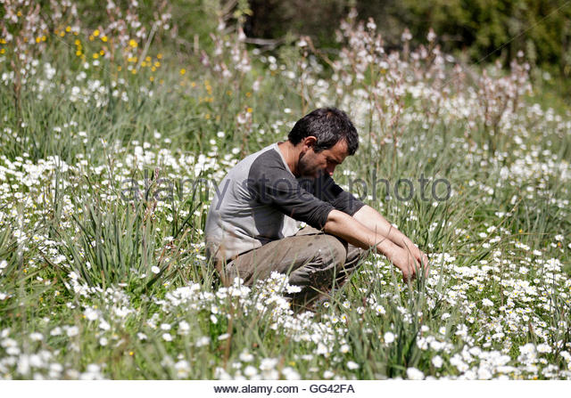 Renting Land Stock Photos Renting Land Stock Images Alamy