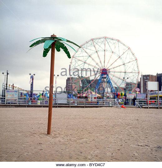 Oasis Brooklyn Ny Coney Island