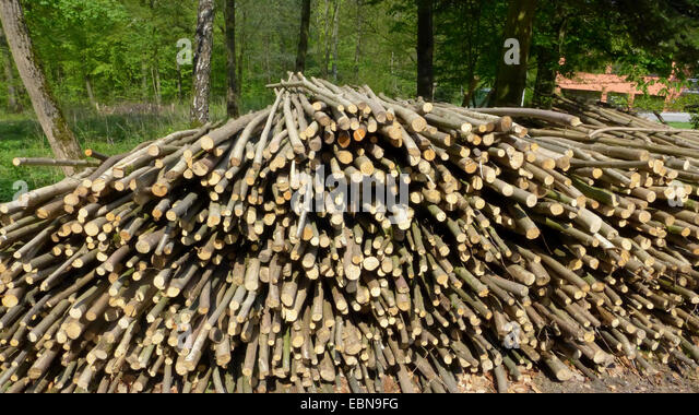 Wooden Rods Stock Photos & Wooden Rods Stock Images