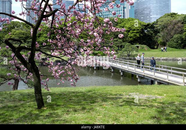 Hama Rikyu Gardens Stock Photos & Hama Rikyu Gardens Stock Images ...