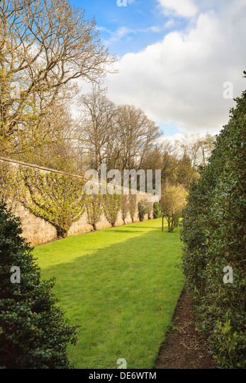 Espaliered stock photos espaliered stock images alamy for Garden trees scotland