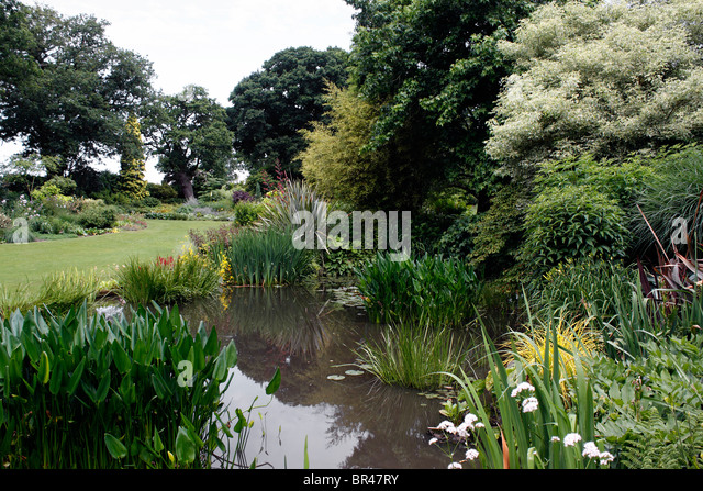 Beth Chatto Garden Stock Photos Beth Chatto Garden Stock