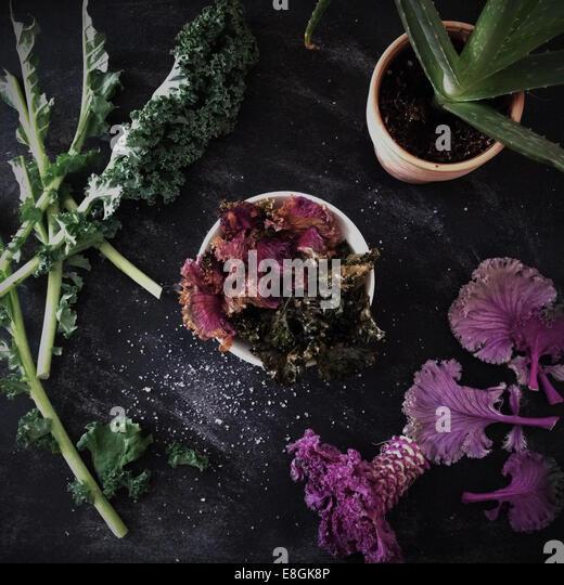 Kale Plant Stock Photos & Kale Plant Stock Images - Alamy