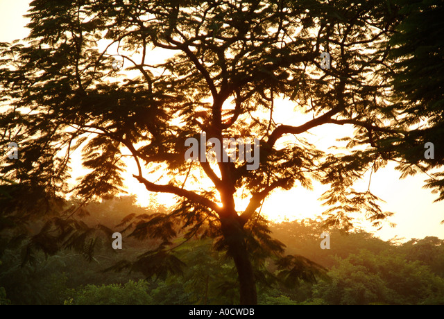 Beutiful beutiful india stock photos & beutiful india stock images - alamy