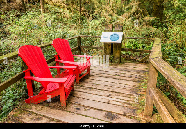 Red Adirondack Style Chairs, Rainforest Trail, Pacific Rim National Park,  British Columbia,