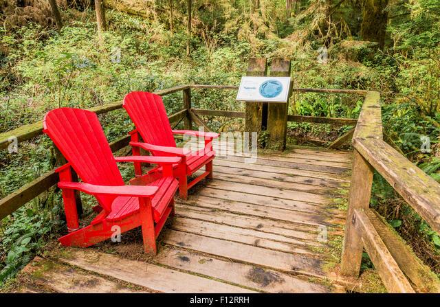 Red Adirondack Style Chairs, Rainforest Trail, Pacific Rim National Park,  British Columbia,
