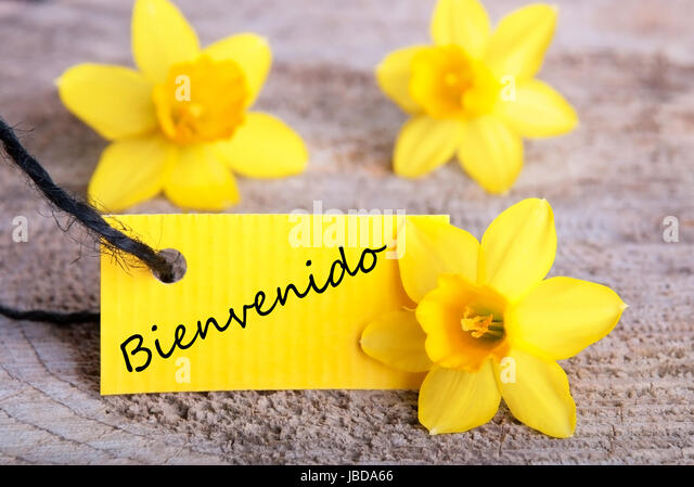 Yellow flowers tag spanish word stock photos yellow flowers tag yellow tag with the spanish word bienvenido which means welcome stock image mightylinksfo