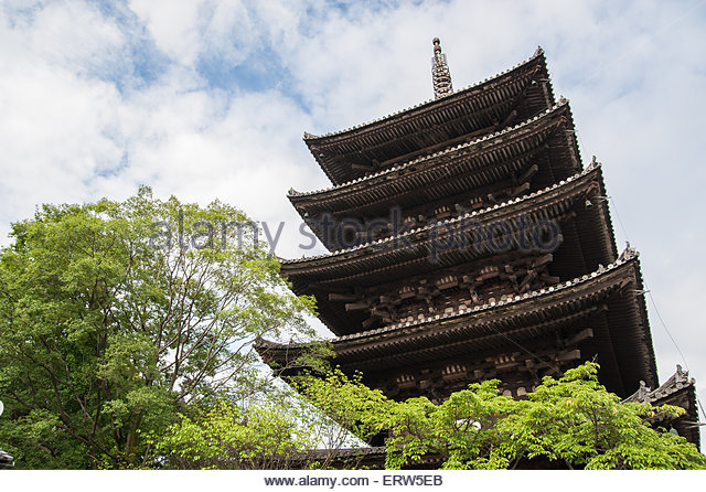 "toji temple essay 2018年7月18日 tea leaf ""ban yanagi"" which is sold at toji(world cultural heritage,temple)  market, rice field in nara, lotus leaf at toshodaiji(world cultural."