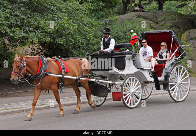 new york city central park carriage stock photos new york city central park carriage stock. Black Bedroom Furniture Sets. Home Design Ideas