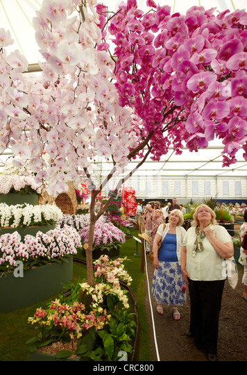 Flower Show Stock Photos & Flower Show Stock Images - Alamy