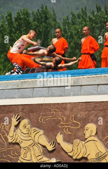 the art of shaolin kung fu pdf