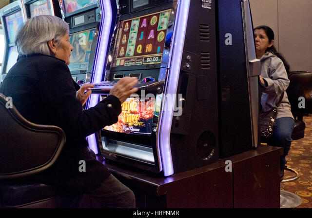 elderly gambling The number of older adults participating in gambling has increased  or  gamblers) and (older or elder or senior or geriatric or later life.