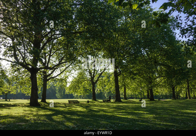 Wighton United Kingdom  city images : ... St. James Park, London, England, United Kingdom, Europe Stock Image