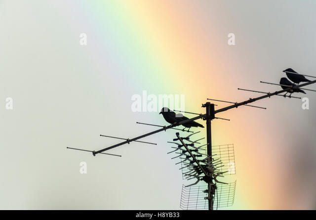 Antenne stock photos antenne stock images alamy for Antenne tele interieur