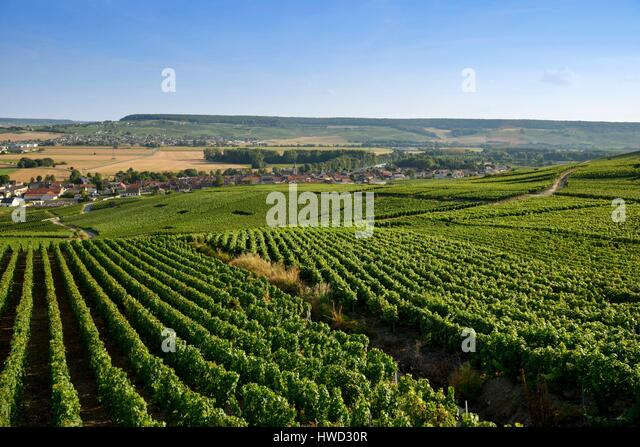 Cumieres stock photos cumieres stock images alamy for Champagne marne