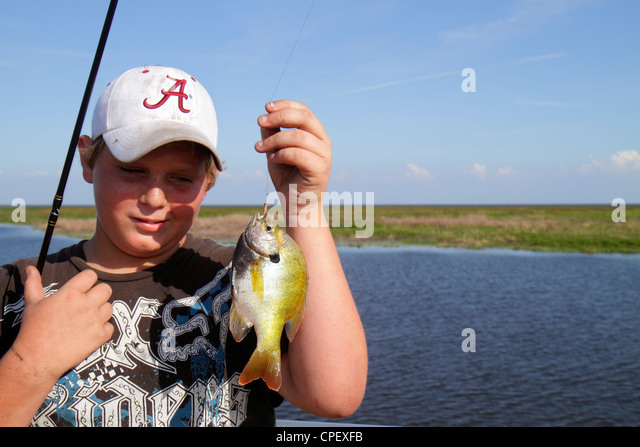 Lake okeechobee fish stock photos lake okeechobee fish for Lake okeechobee fish camps