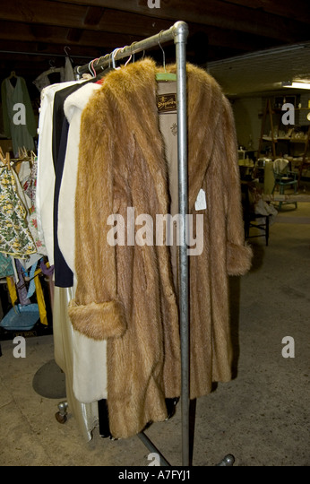 Mink Coat Stock Photos & Mink Coat Stock Images - Alamy
